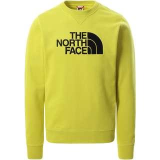 The North Face DREW PEAK Sweatshirt Herren citronelle green