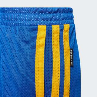adidas Young Creators Legend Basketball Shorts Funktionsshorts Kinder Blue / Yellow