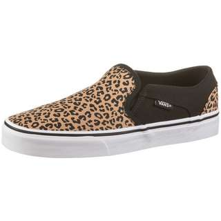 Vans Asher Sneaker Damen black-white