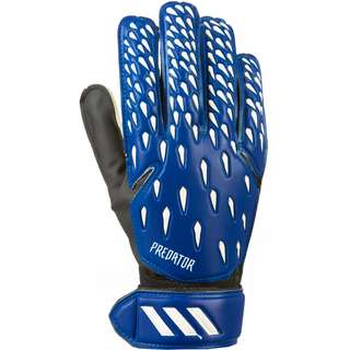 adidas Predator Training Torwarthandschuhe team royal blue-white-black