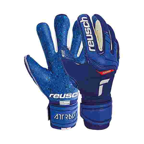 Reusch Attrakt Fusion Ortho-Tec Guardian Torwarthandschuhe deep blue / deep blue
