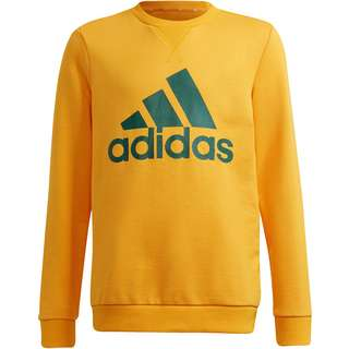 adidas Essentials Sweatshirt Kinder semsolgol