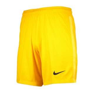 Nike Park Torwart Short Torwarthose Herren gelbschwarz