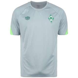 UMBRO SV Werder Bremen Fanshirt Herren hellgrau / hellgrün