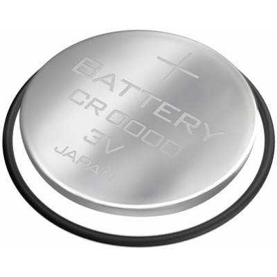 Polar Batterie