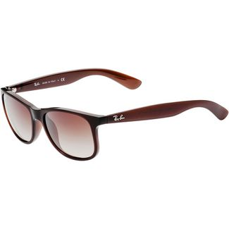 RAY-BAN Andy 0RB4202 Sonnenbrille matte brown