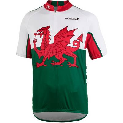 Endura Wales Fahrradtrikot Herren weiß grün