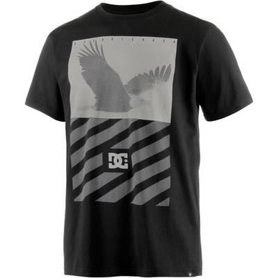 DC Skyview Printshirt Herren schwarz