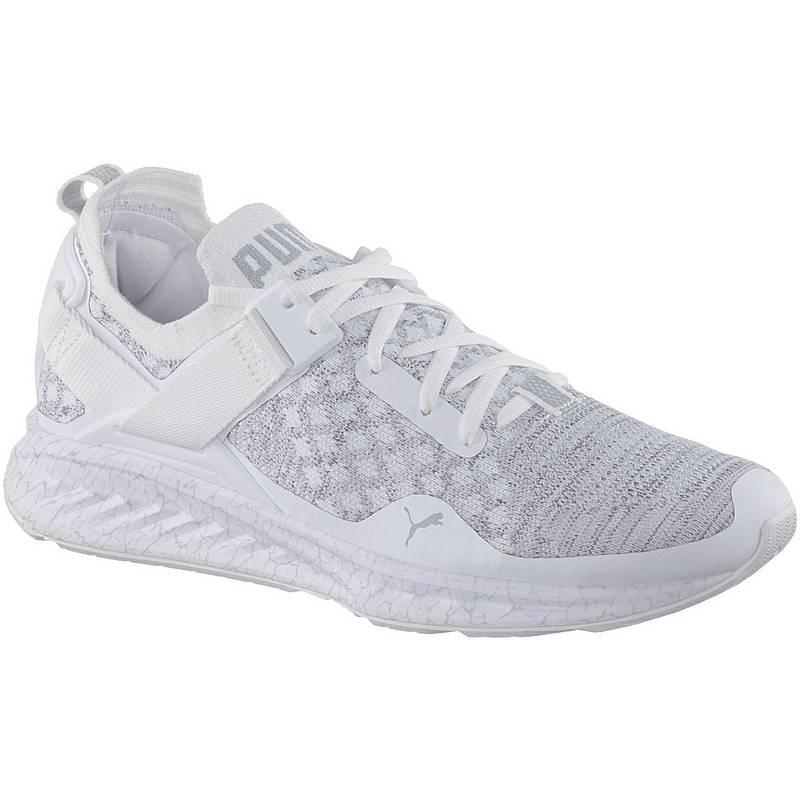 b697d3646f5 PUMA IGNITE evoKNIT Lo Hypernature Sneaker Herren Puma White-Quarry-QUIET  SHADE