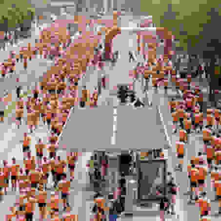 Viele Läufer nehmen am Stadtlauf Dresden teil!