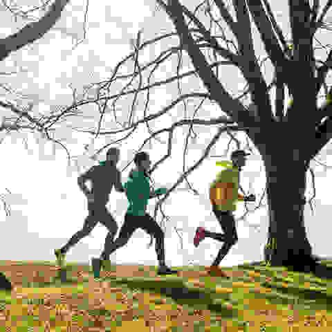Eine Gruppe Trailrunner läuft querfeldein über ein Feld