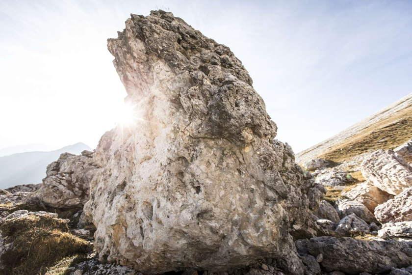 Ein Felsen in der Nahaufnahme.