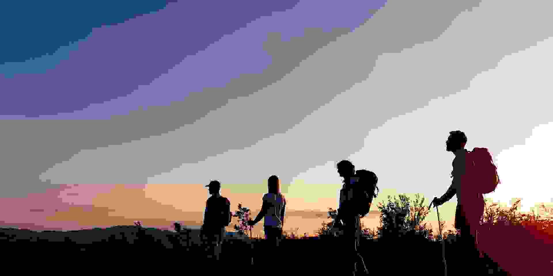 Eine Gruppe Nachtwanderer geht bei Dämmerung über ein Feld