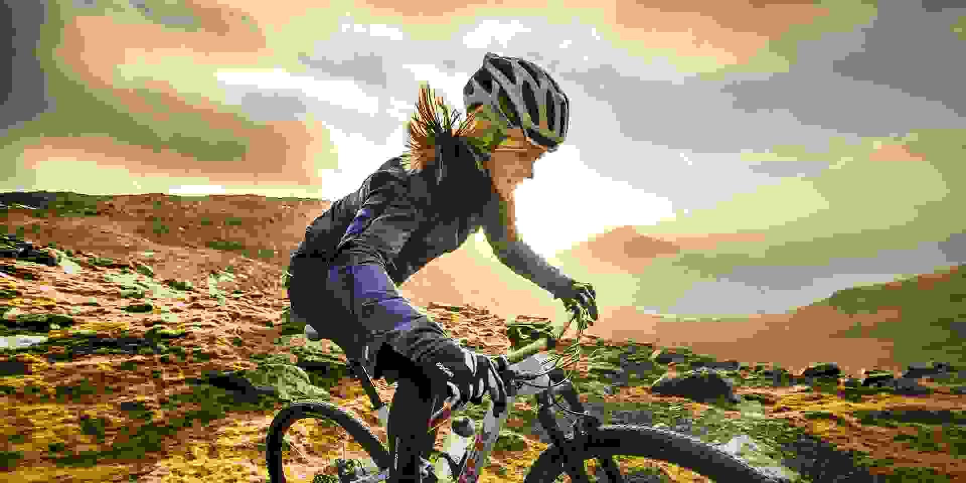 Radsportsortiment bei SportScheck kaufen