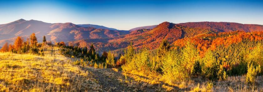 Eine Berglandschaft im Herbst. Das Laub der Blätter zeigt sich in herbstlicher Farbpracht. Die perfekte Zeit für Fleecejacken.