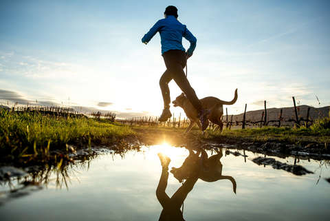 Ein Läufer joggt mit seinem Hund an einem Teich entlang.
