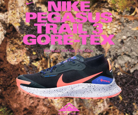 Nike Pegasus Trail 3 GTX