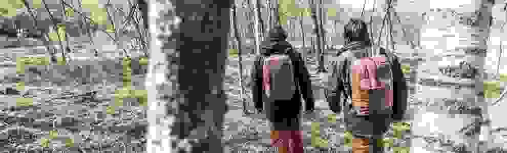2 Männer wandern im Wald. Auf ihren Rücken tragen sie Multisportrucksäcke.