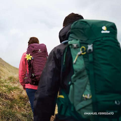 Ein Mann und eine Frau wandern mit Rucksäcken auf dem Rücken durch eine grüne Landschaft.