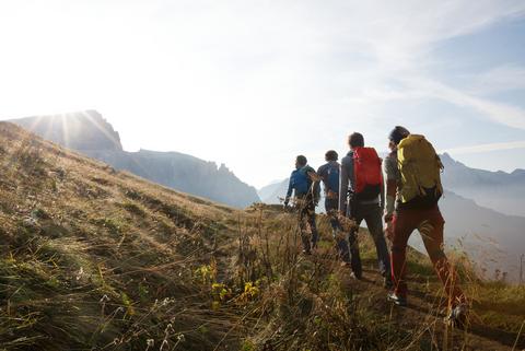 Ein Gruppe wandert mit Rucksäcken auf dem Rücken durch eine grüne Landschaft