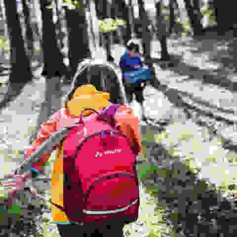 Kinder beim Wandern im Wald