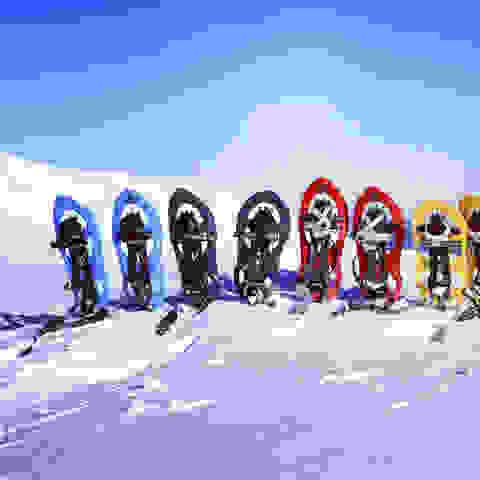 Verschiedene Schneeschuh-Typen im Einsatz