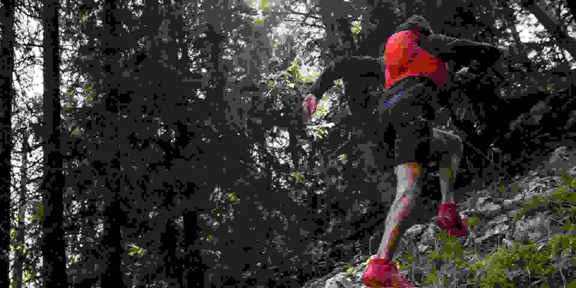 Ein Trailrunner läuft bergauf einen Waldweg entlang.