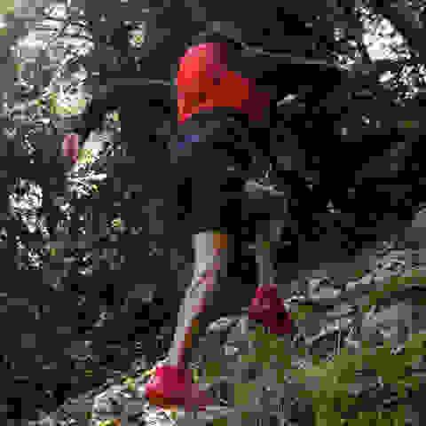 Ein Mann läuft mit Trailrunning Schuhen von Salomon einen steilen Trail im Wald hinauf