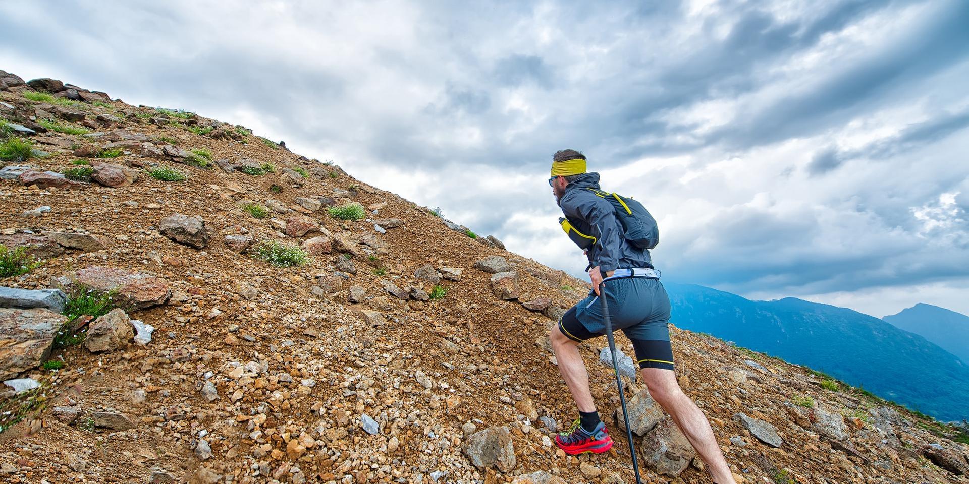 Ein Trailrunner läuft mit Trailrunning Stöcken in der Hand eine Bergwiese hinauf.