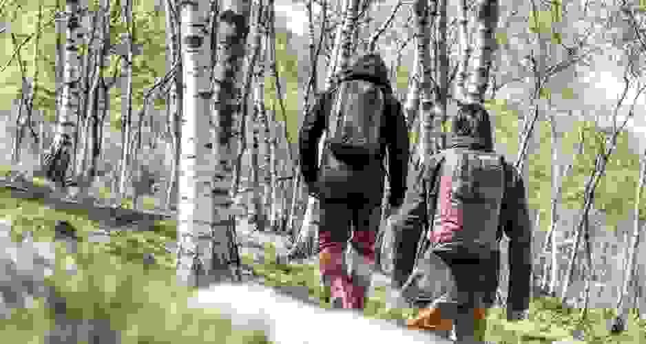 2 Männer auf einer Wandertour im Wald. Auf dem Rücken tragen sie entsprechende Wanderrucksäcke.