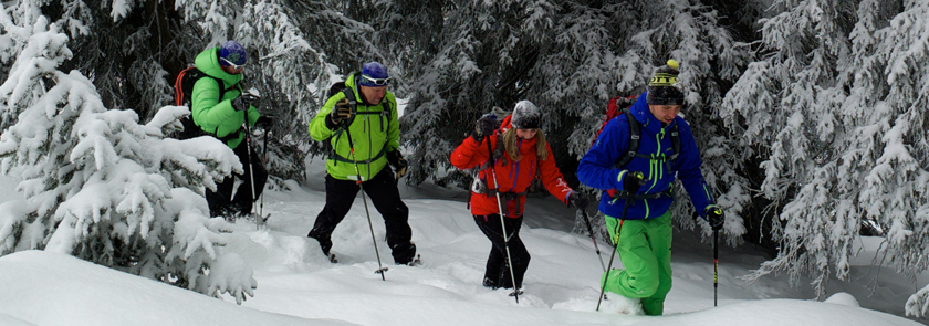 Gruppenwanderung im Schnee.