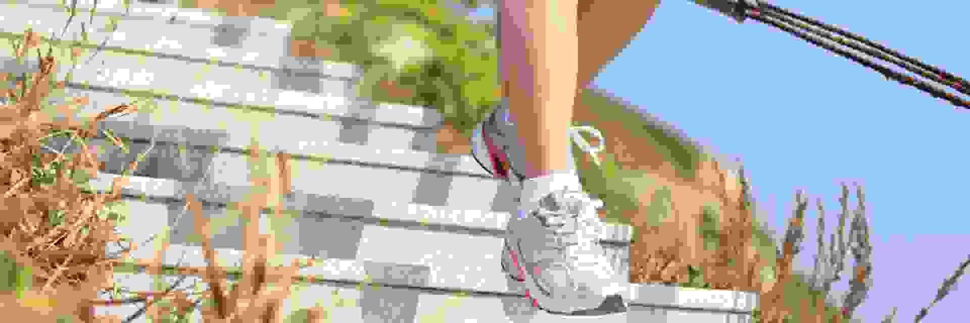 Eine Trailrunnerin läuft in weißen Trailschuhen eine Trepper hinunter