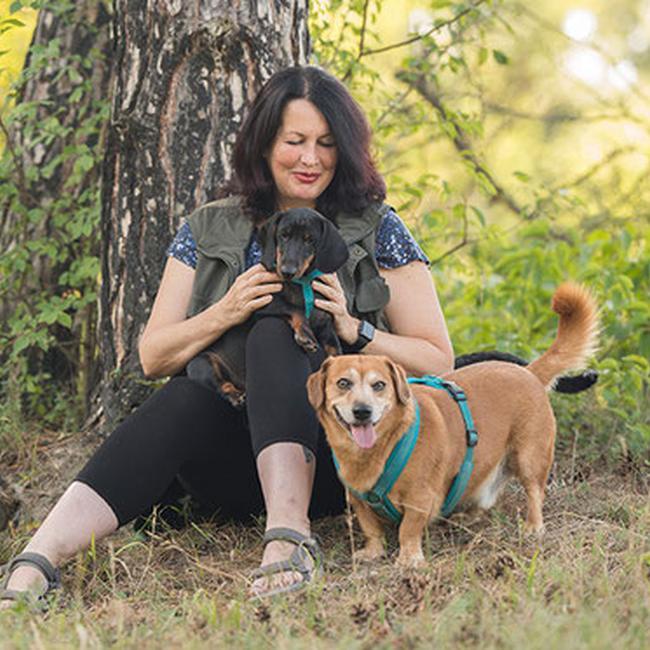 Bild von Ulli Reichmann mit Hunden