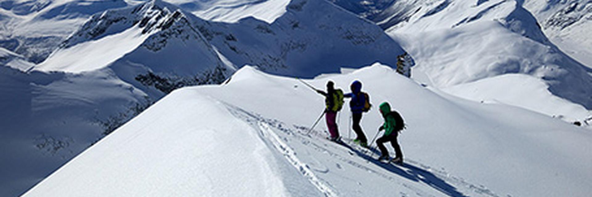 Eine Gruppe von Skitouren Fahrern.
