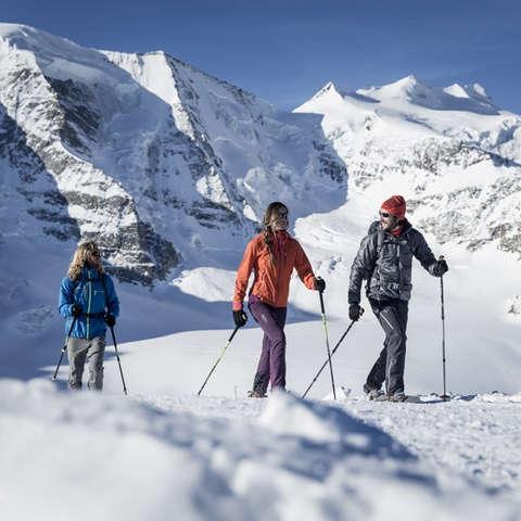 Eine Gruppe Schneeschuhwanderer wandert an einem sonnigen Wintertag vor dem Panorama des Piz Palü